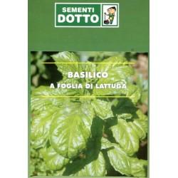 SEMI DI BASILICO FOGLIA LATTUGA DA GR.500