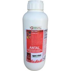 AGRISYSTEM ANTAL INSETTICIDA A BASE DI DELTAMETRINA LT. 1