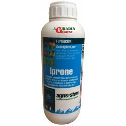 AGRISYSTEM IPRONE FUNGICIDA ANTI BOTRITICO A BASE DI IPRODIONE LT. 1