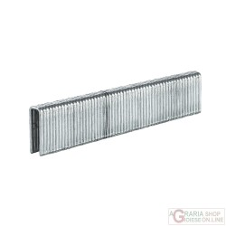 Einhell 3000 graffette 5x16 mm per DTA 25/2
