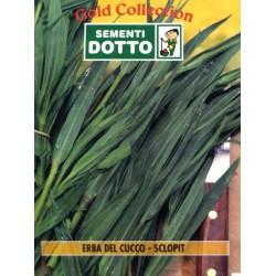DOTTO BUSTE SEMI DI ERBA DEL CUCCO - SCLOPIT