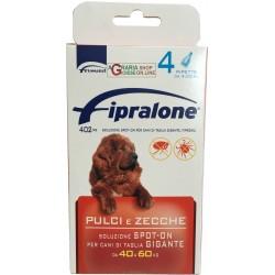 Fipralone antiparassitario pulci e zecche spot-on cane 40 - 60