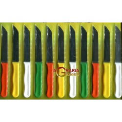 FIXWEL SET 12 PZ. SPELUCCHINI COLORATI