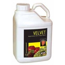 GREEN VELVET-STIMULATING BIOEQUILIBRATORE DEVELOPMENT RADICAL KG. 6