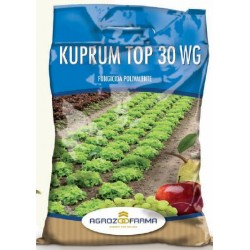 KUPRUM TOP 30 WG BLUE KG. 1